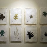 松谷千夏子Drawing-Leaf